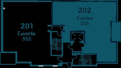 carina-202