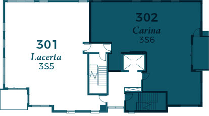 carina-302