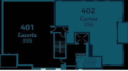 carina-402