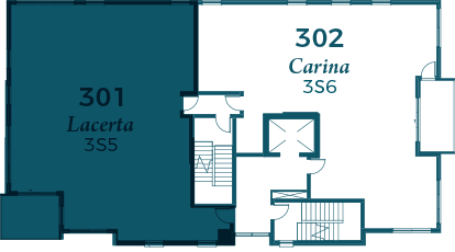lacerta-301